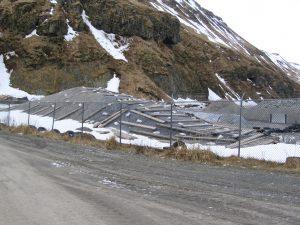 Unalaska Soil